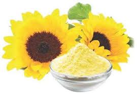 NON GMO Sunflower Lecithin Powder-Food Grade - Aarna Group